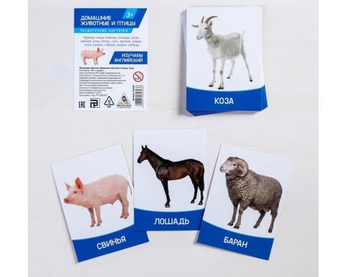Карточки Домана Домашние животные и птицы на английском языке