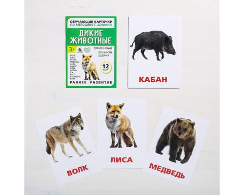 Карточки Домана Дикие животные