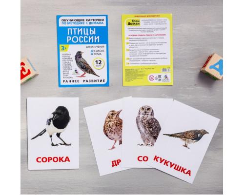 Карточки Домана Птицы России
